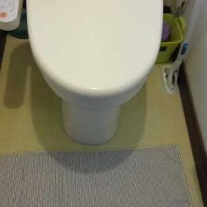 トイレにマットは必要か