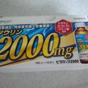 ビタガッツ2000