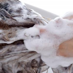シャンプーは毎日するべき?髪は一度に何回洗う?