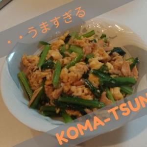 ヘルシー副菜!簡単めちゃうま小松菜とツナとの卵炒め【パパ飯レシピ】