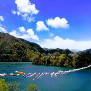 相俣ダム60周年記念 「赤谷湖鯉のぼり2019」5/27(月)まで