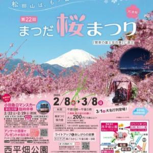 松田の河津桜の巻