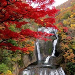袋田の滝の紅葉観光2019の見頃や評判は?アクセスや駐車場情報!