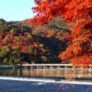 京都嵐山の紅葉観光2019の見頃や評判は?アクセスや駐車場情報!