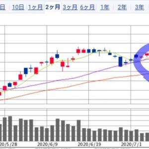 日本株 個別