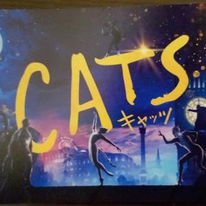 【映画】「キャッツ」って「猫×ミュージカル」は最強のハズ