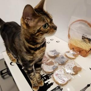 猫バカが狂喜する老舗煎餅