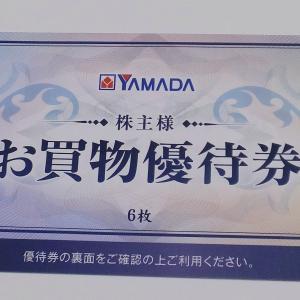 ヤマダ電機の株主優待(100株長期)