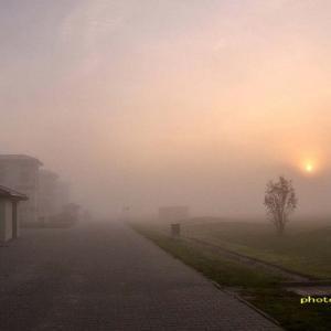 朝日が出てから急に濃霧になった!