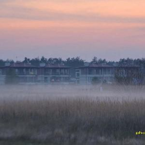 また濃霧~昨夜から今もずっと続く