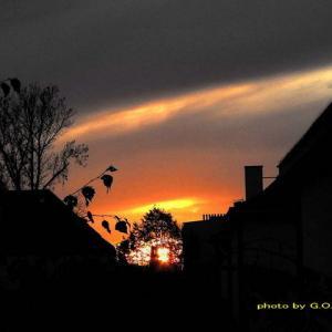 ビルの谷間の夕陽に年2回こんばんは