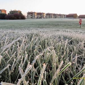 零下4度の朝~この秋初めての零下