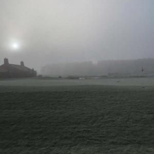 朝日が昇った後に霧が出るなんて…