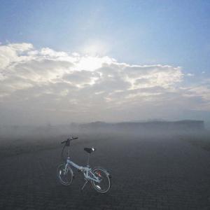 昼前に晴れているのに濃霧になった