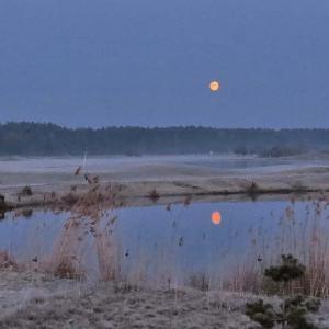 赤い満月~撮った訳は霜とボケ玉