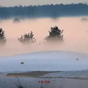 夕暮れの草原の毛嵐が幻想的だった