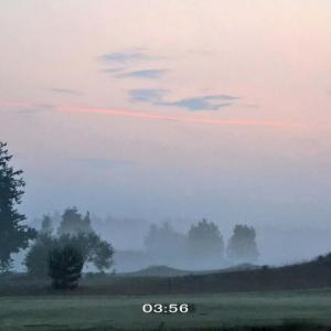 霧の夏至の明け方は人々が活動的ww