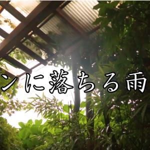 【ASMR自然音】トタンに落ちる雨の音