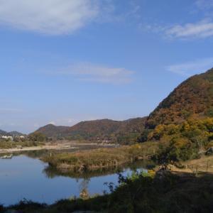 犬山 桃太郎公園 キャンプ場