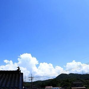 【 青空と入道雲と二重虹 】