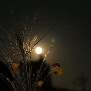 【 中秋の翌日の月 】