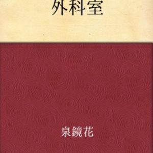 日本文学第14回 泉鏡花 - 外科室