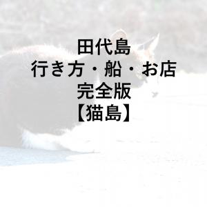 田代島への行き方・船や港・島の情報・猫の多さ・完全版【猫島】