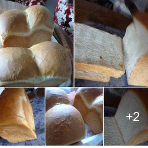 巣籠対策 焼きたて食パンは、贅沢この上ない 上級メニューだね 🍞