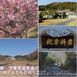 伊豆の文化と歴史・あの噂の露天風呂・伊豆の松島 遊覧巡り 🚢