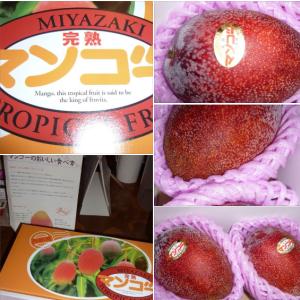 ヤッパリ・宮崎産は、違うね 完熟マンゴー ❣