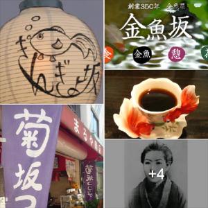 『坂道物語』小洒落たテーマなのだ 金魚とゆかりの文人達 ^^!