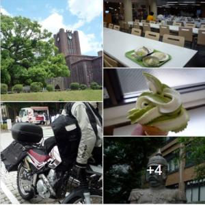 ランチツーは、東大 本郷キャンパス 学食&銀杏メトロ食堂でソフトクリーム 🍦