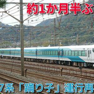 【JR東日本】E257系2000番台「踊り子」運行再開へ!約1か月半ぶり