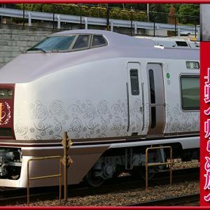 651系1000番台『伊豆クレイル』は残念ながら廃車か…EF64と連結