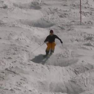 動画:スキー板を変えることでコブの滑りに違いがあるか検証
