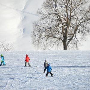 スキーと宿泊の関係