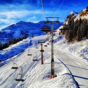 基礎スキーはテクニカルが鍵