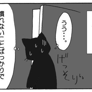 それいけNNN 黒猫兄弟の巣立ち
