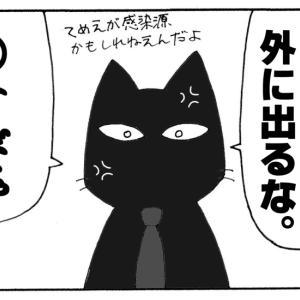 それいけNNN 目力マシマシ