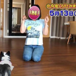 【今夜くらべてみました】ミリオン歌手Hは広瀬香美?愛犬との画像!