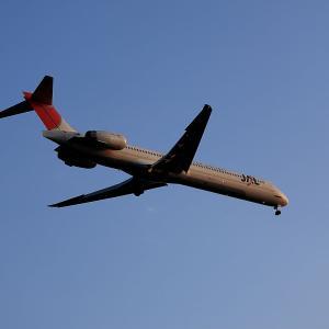 2009.12 城南島 JAL MD-90-30 JA8070 RWY22 ARV
