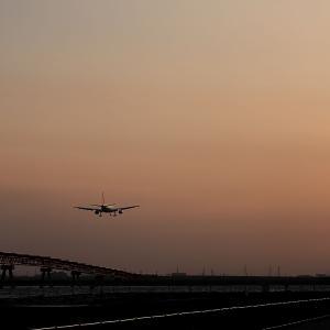 2009.12 城南島 JAL A300-600R JA8558 RWY22 ARV