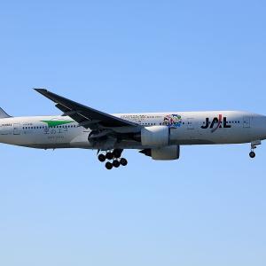 2010.12 羽田AP 34L右 JAL B72 JA8984 空のエコ RWY34L ARV