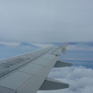 2011.06 関西AP 羽田-関空 SFJ A320 JA01MC