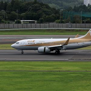 2011.08 成田AP ナリコー JAL B37 JA01AN ゴールドジェット RWY16L ARV