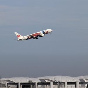 2021.08 羽田AP 第1ターミナル JAL B63 JA622J ドリームエクスプレス RWY16L DEP