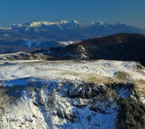 信州冬紀行 八ヶ岳