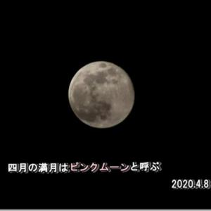 春の満月をピンクムーンと呼ぶ