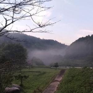 川霧湧いて