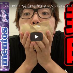 【Hikakin(ヒカキン)】人気動画ランキング16~13位